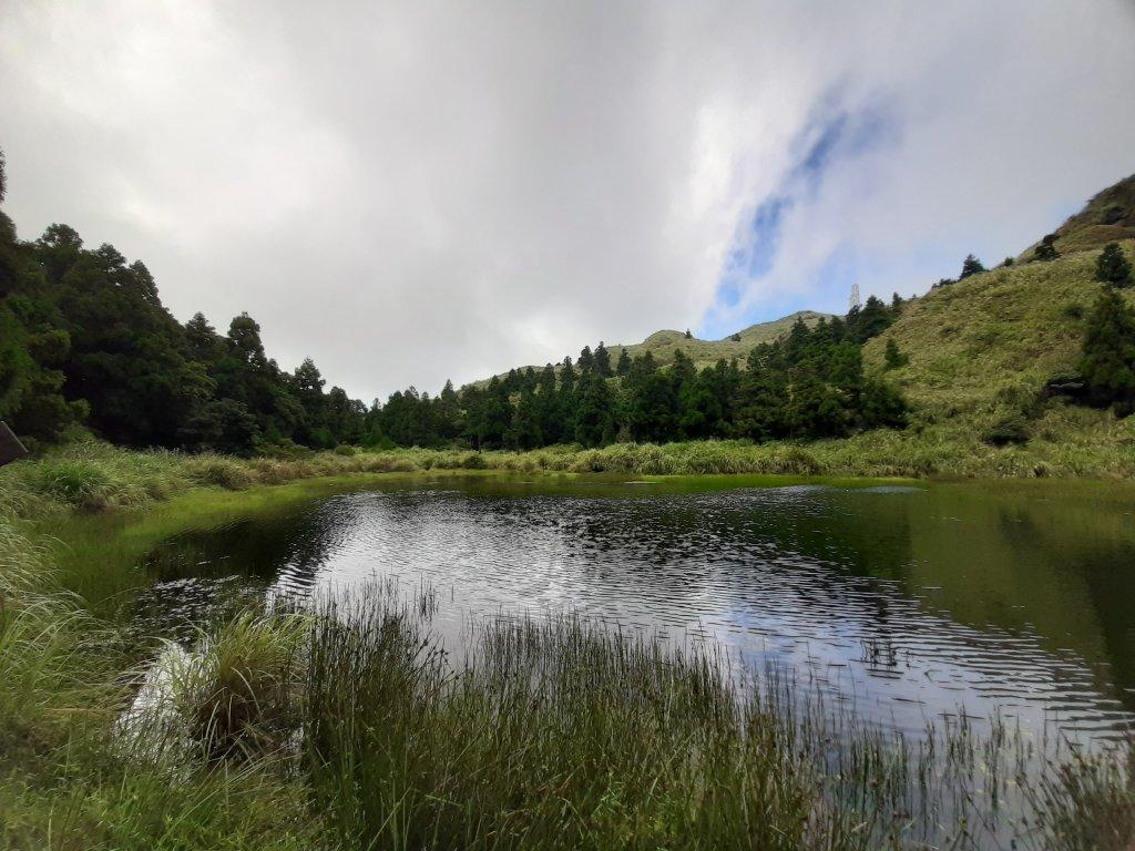 初秋走讀森林的風情與美感_1121435