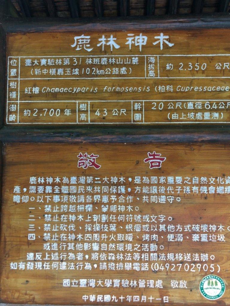 塔塔加五連峰_925460