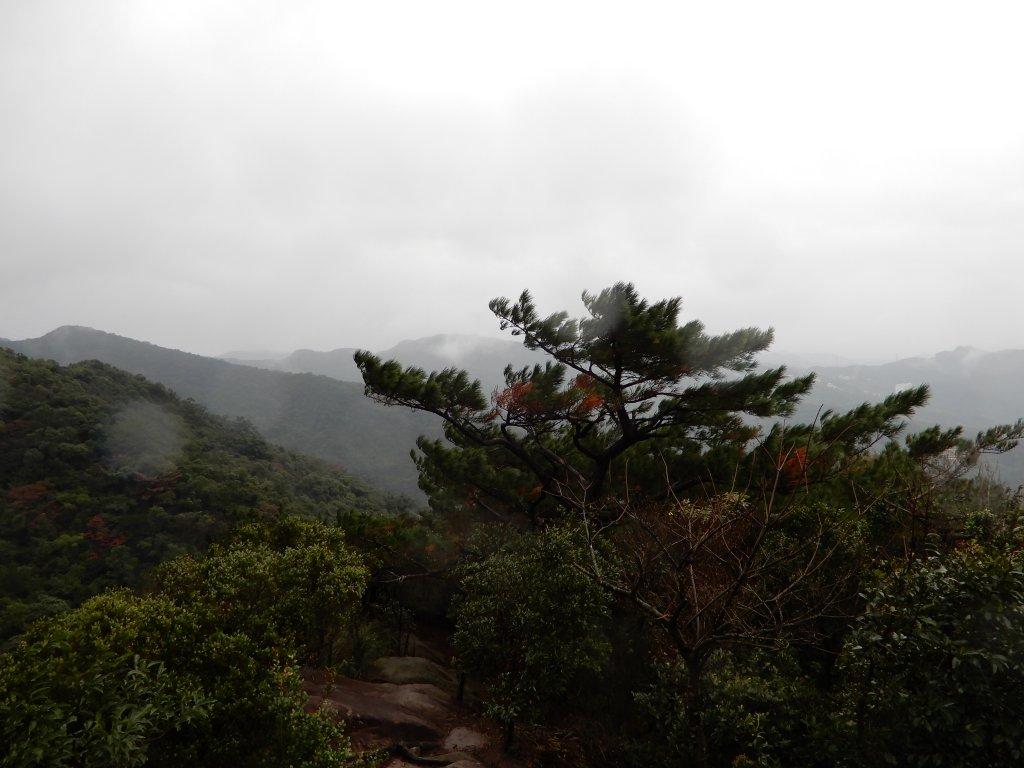 金明山/柯子林山/如意湖O型_793975