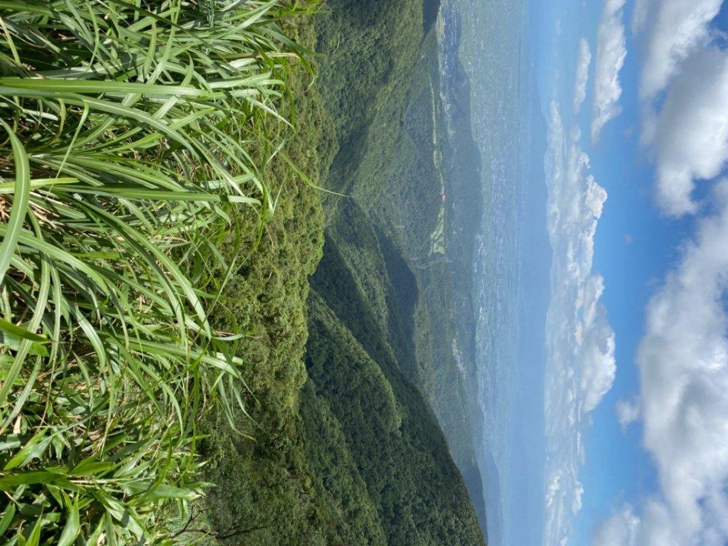步道巡訪員 l 聖母登山步道六月份巡訪_1015609