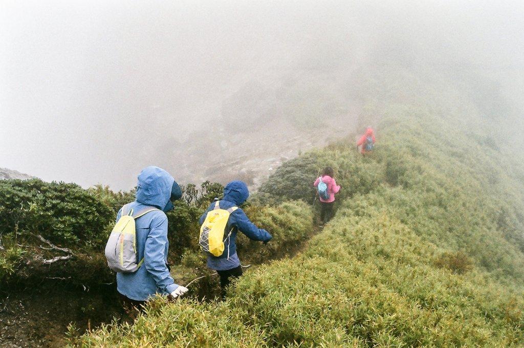 霧中之奇萊北_1362210