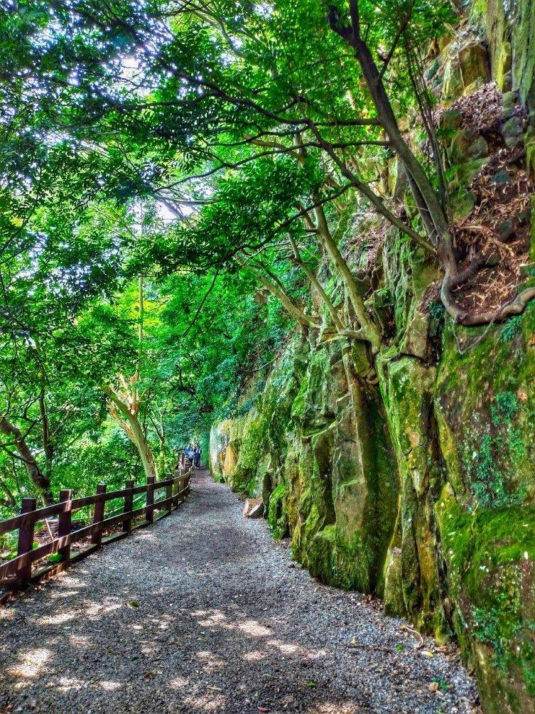 夏季清涼步道:翠峰瀑布與步道_619634