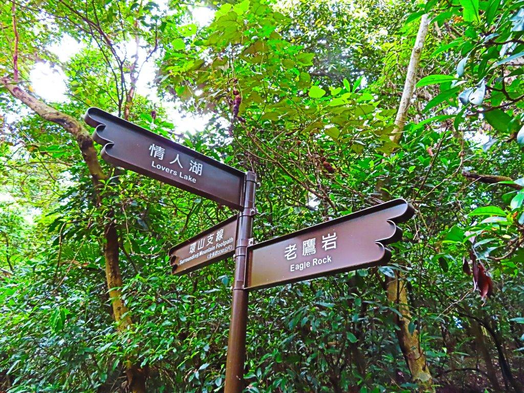 搭著公車去旅行:情人湖、海興路森林步道_583074