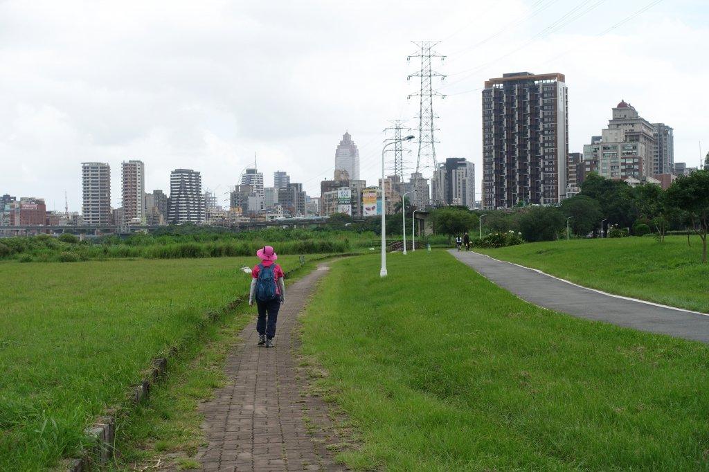 雙園河濱公園.華江雁鴨自然公園_1124237