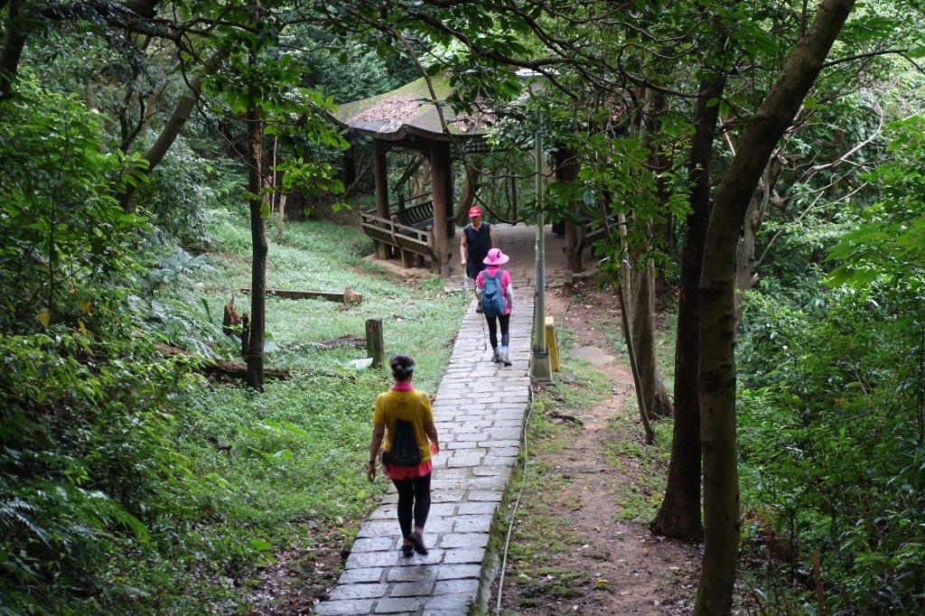 虎山自然步道.麗山橋口步道_1098206