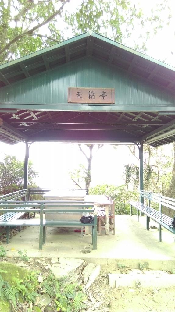 新店-獅頭山(小獅山)105.04.04_56075