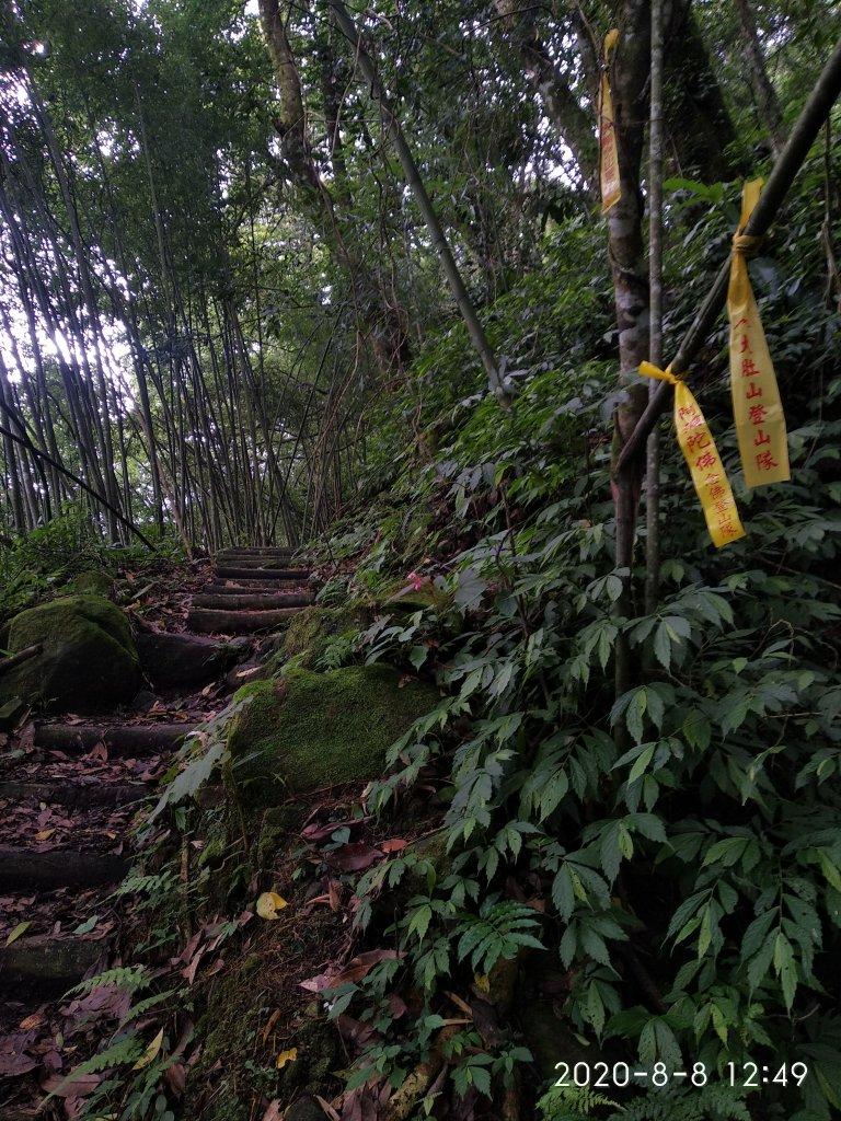 步道巡訪員 l 石夢谷步道7月巡訪日誌_1062032