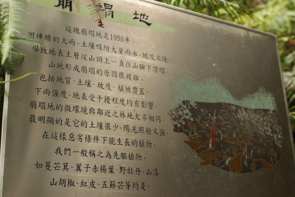 惠蓀林場步道_172023