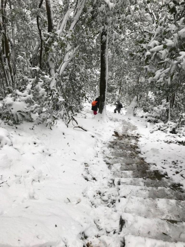 201802 東眼山追雪記自導式步道_294083