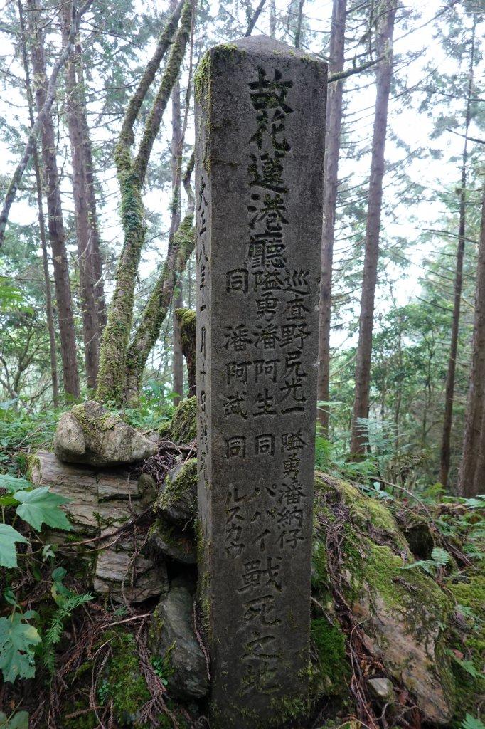 用雙腳看台灣-新康橫斷_762169
