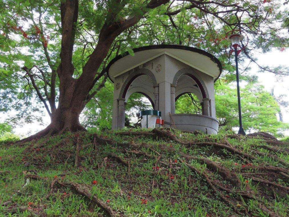 台中公園懷舊散策_631088
