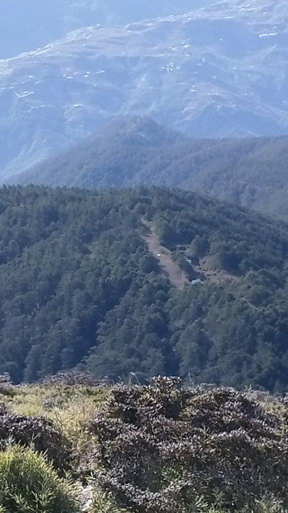 百岳天堂路 天梯散步道_662134