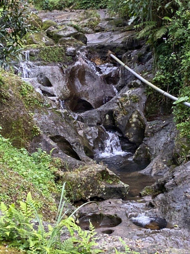整理往平溪峰頭尖的山路2_834776