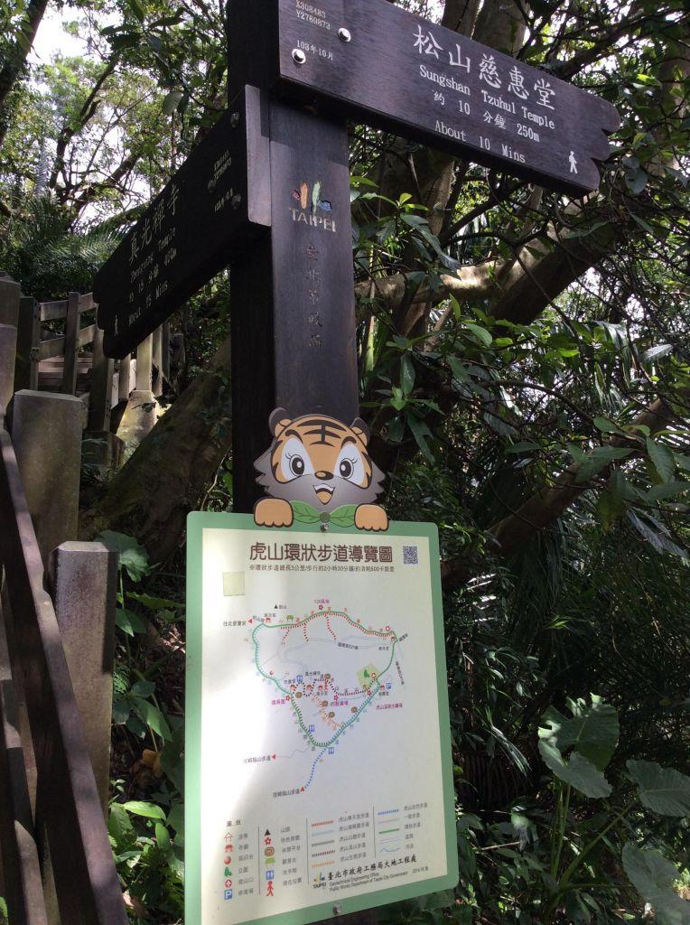虎山>九五峰>象山親山步道_173014