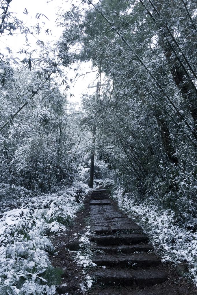 雪中走訪向天池_28985