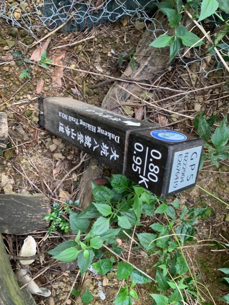 大坑7號步道與大坑8號步道_674336