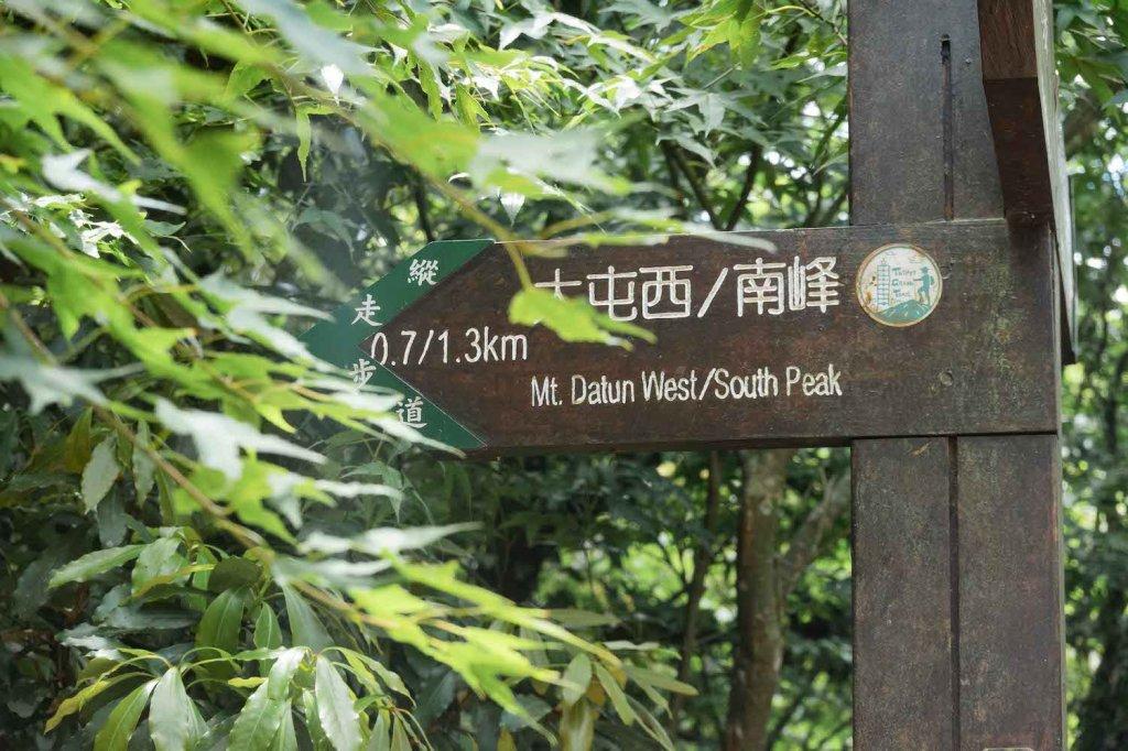 【台北大縱走第二段】大屯西峰、南峰與大屯山的絕美景致_1362710