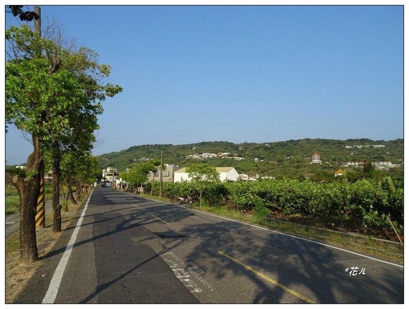 高雄-大崗山(小百岳)_1420627