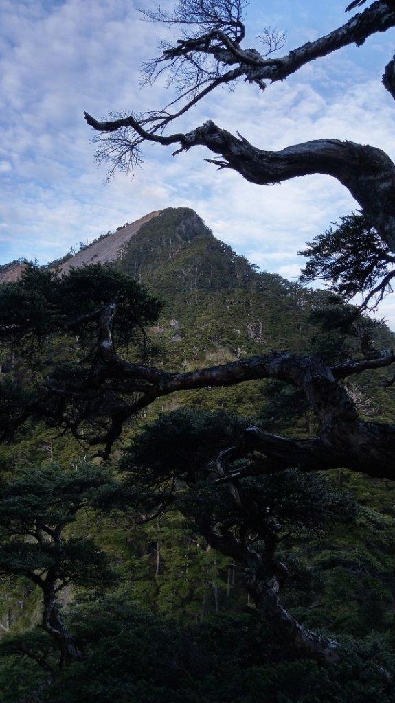 百岳天堂路 天梯散步道_662127