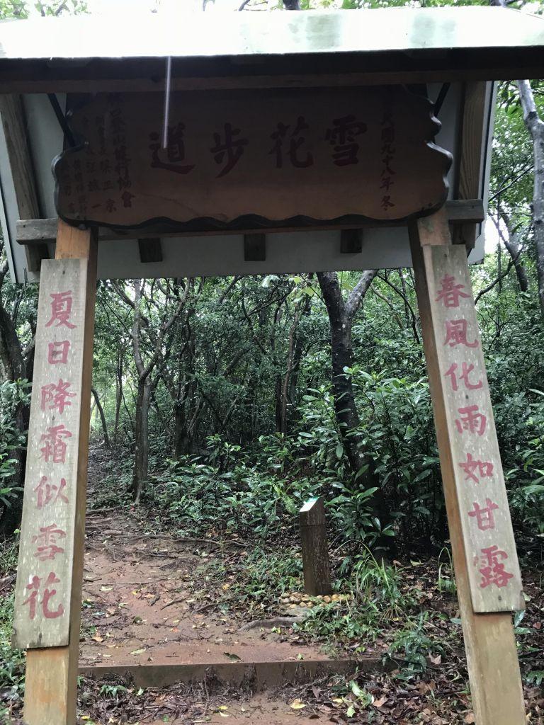 滿月圓森林步道 林口森林步道_186854