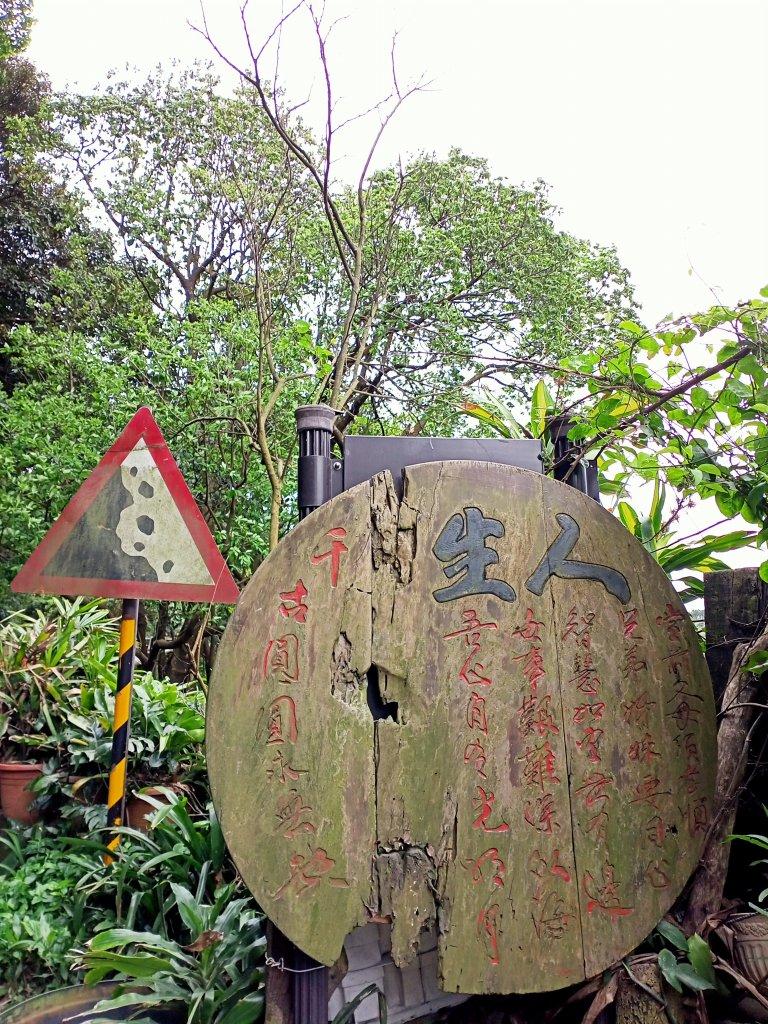 龍鳳呈祥的北投龍鳳谷步道_1320358
