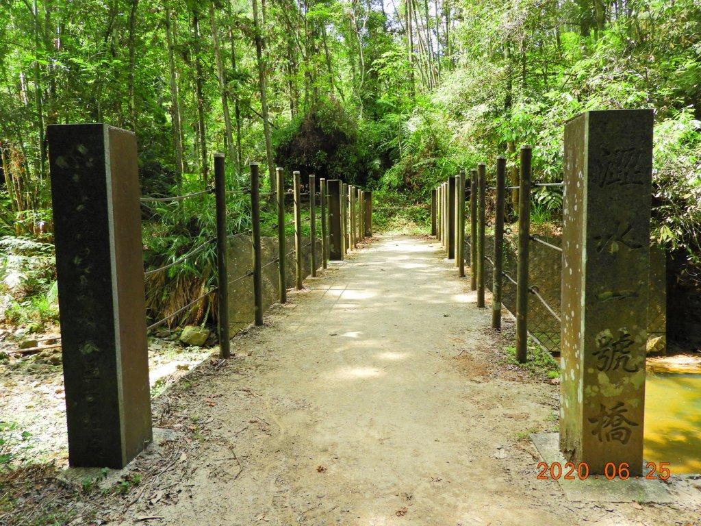 南投 魚池 澀水森林步道_1012407