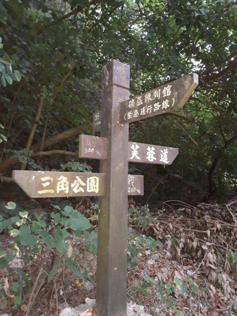 大崗山生態園區_478117