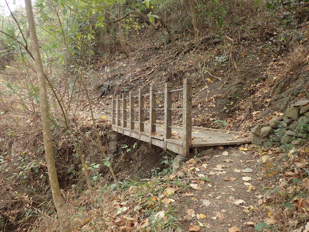 步道巡訪員│浸水營前段步道1月巡訪日誌_815025