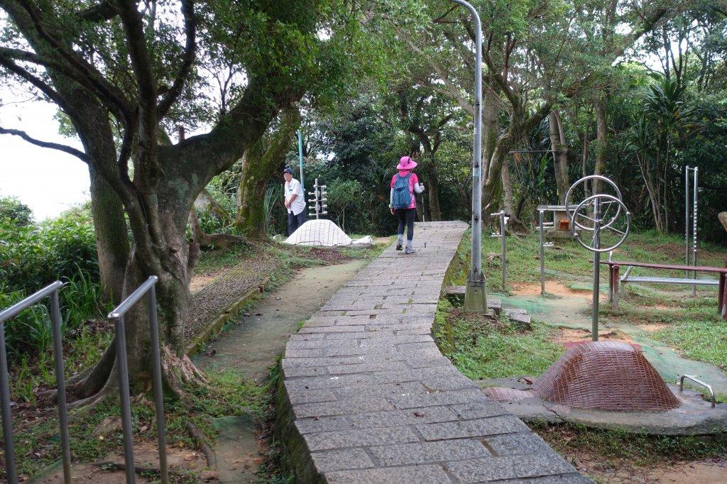 虎山自然步道.麗山橋口步道_1098194