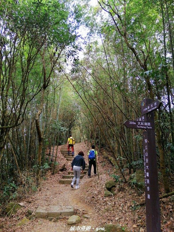 山林野宴之步道健行。 奉天岩~大巃頂步道_1321357