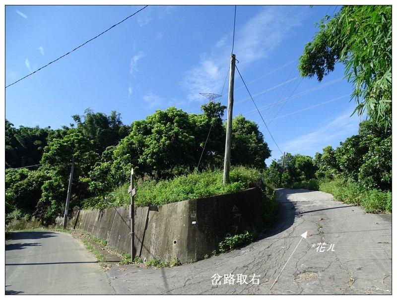 霧峰/阿罩霧山(小百岳)_626573