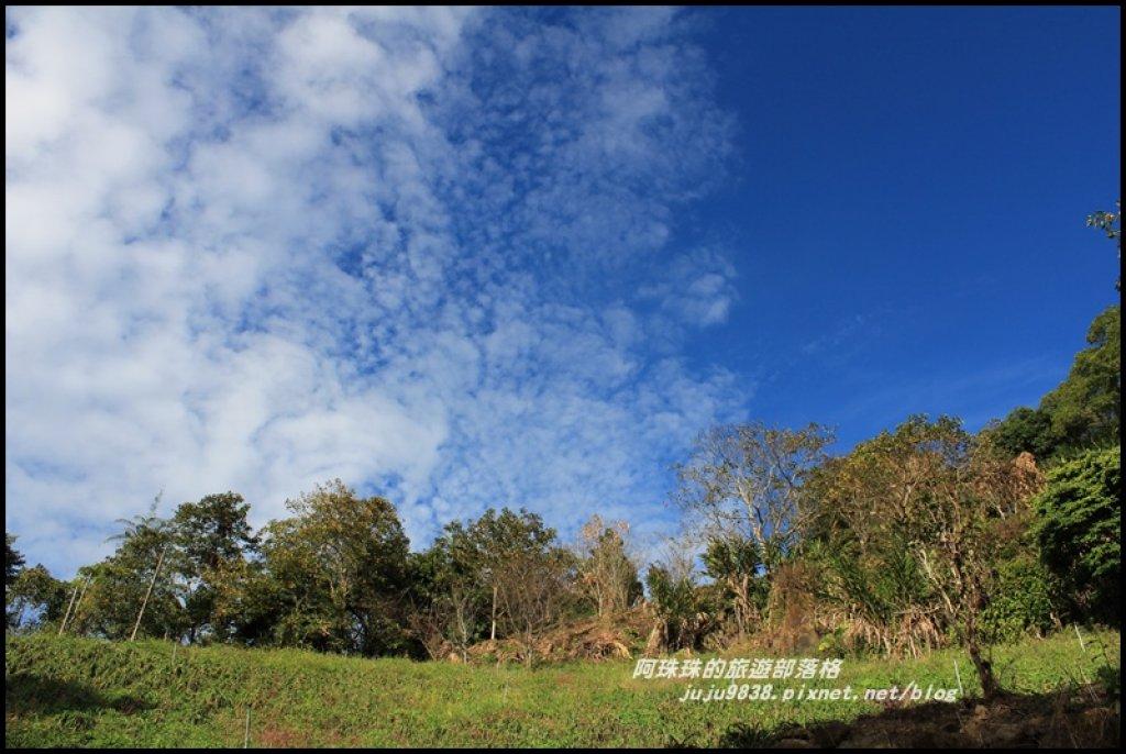 沐心泉冬季限定白雪木與黃金楓的浪漫相遇_481806