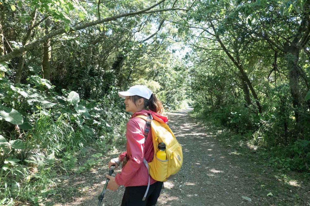 【台北大縱走第一段】輕鬆愜意的竹林與鄉村小徑_1362415
