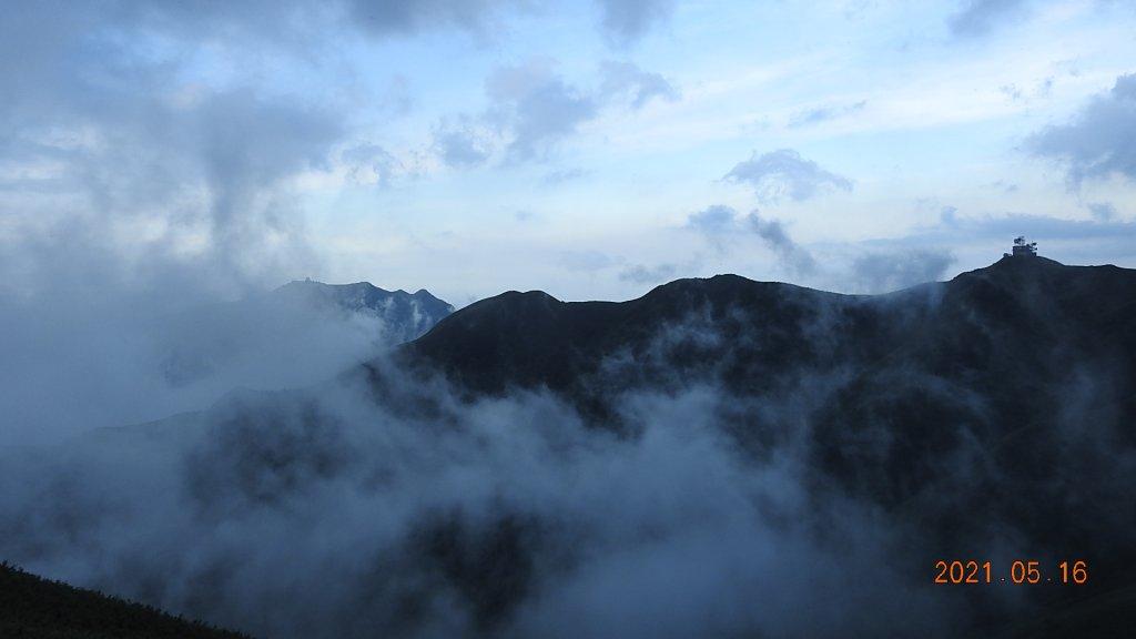 再見觀音圈 - 山頂變幻莫測,雲層帶雲霧飄渺之霧裡看花 & 賞蝶趣_1390060