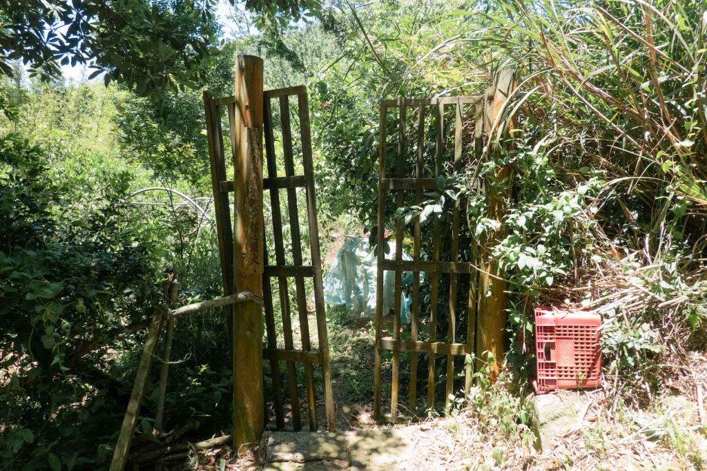 【台北大縱走第一段】輕鬆愜意的竹林與鄉村小徑_1362380