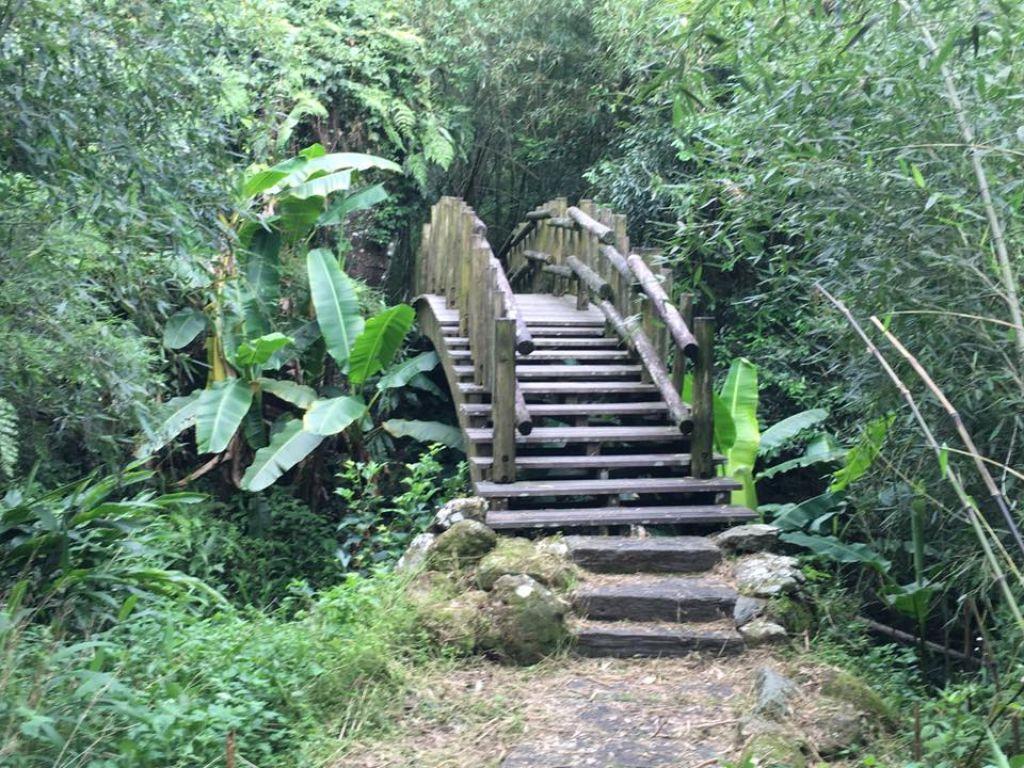 里美避難步道、巨石板步道_185947