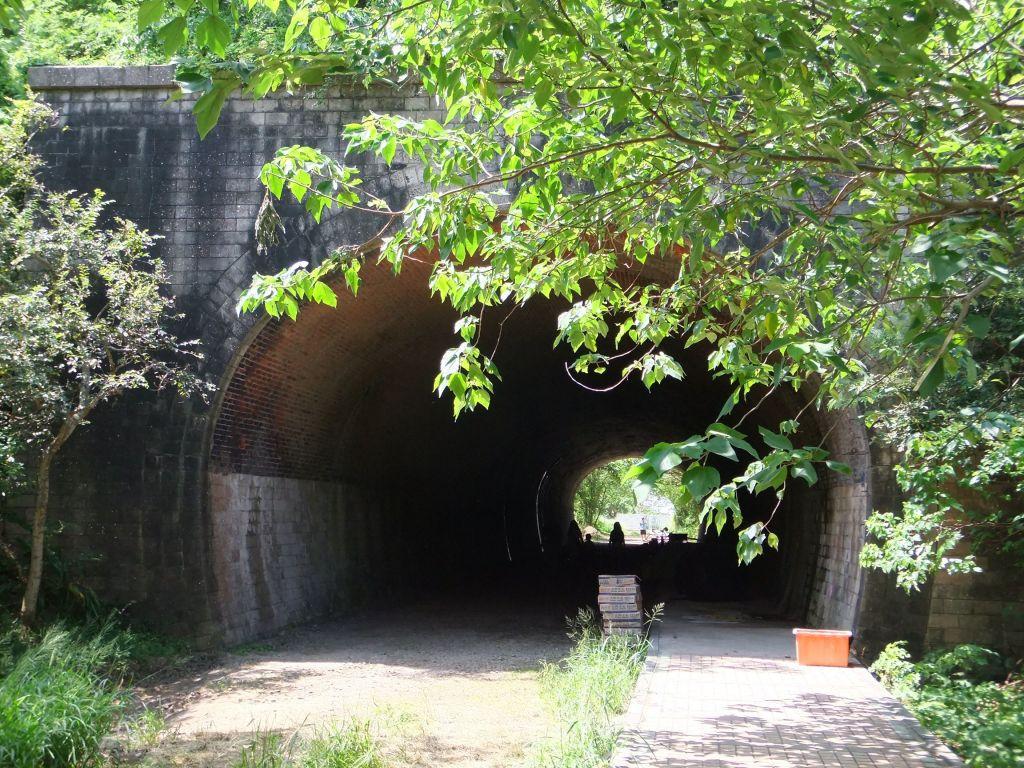 崎頂子母隧道步道_387690