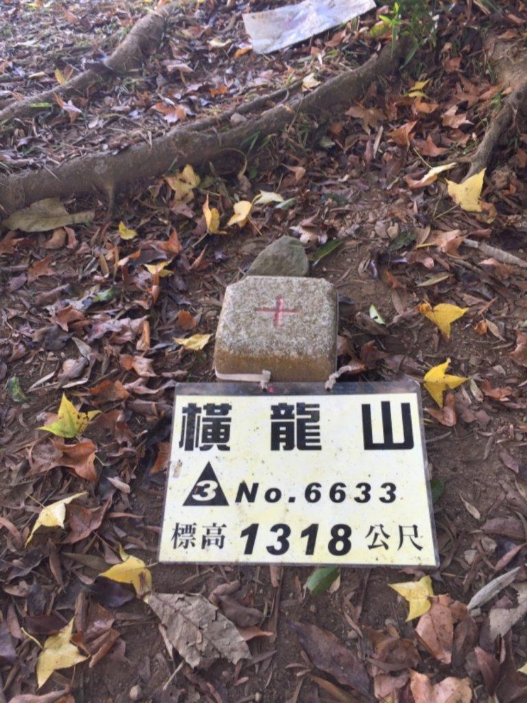 騰龍山&橫龍山古道_1140350
