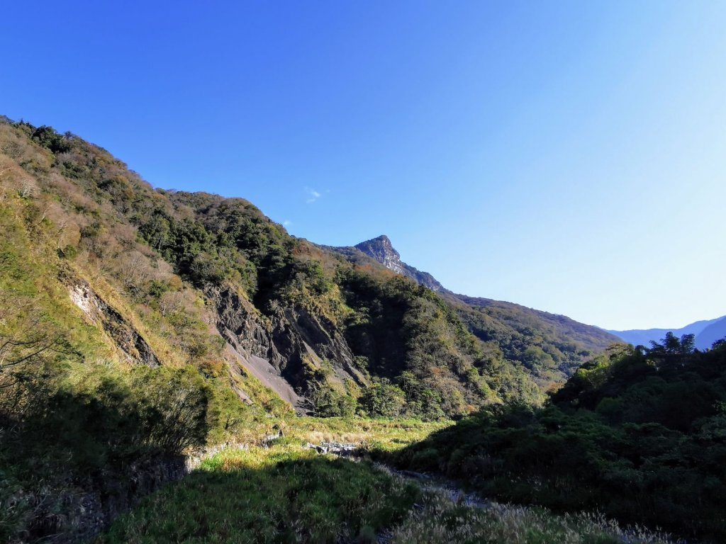 越野跑初體驗 - 高心律的去體驗常走的山徑 (虎、上島山) - 2021/1/10_1322738