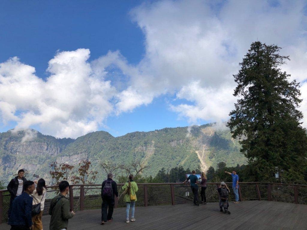 阿里山水山巨木、祝山觀日步道、對高岳步 _727039