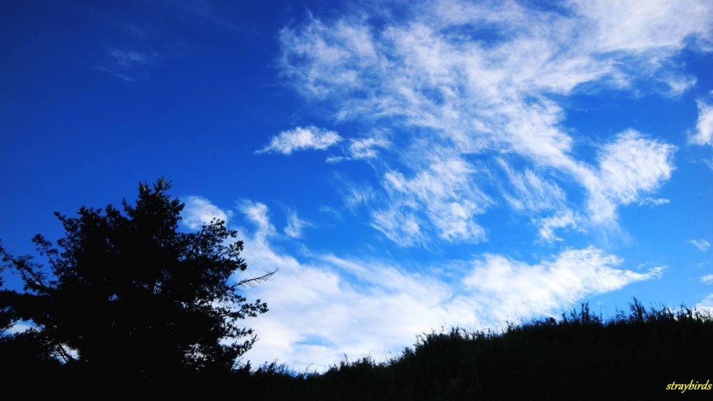 流浪山林的故事~雪山聖稜線_644159
