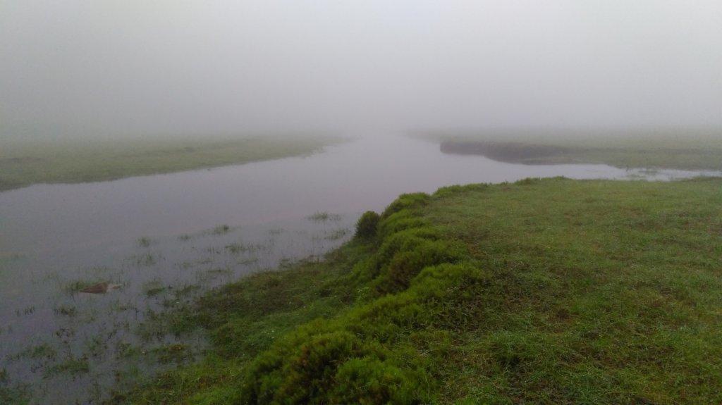 松蘿湖_584177