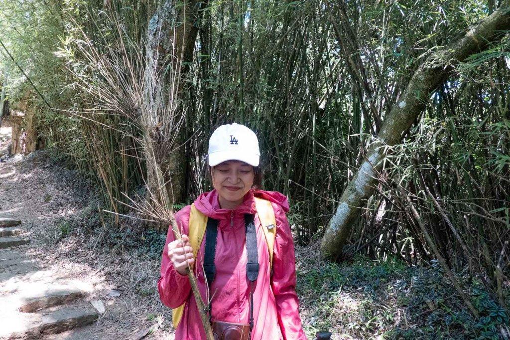 【台北大縱走第一段】輕鬆愜意的竹林與鄉村小徑_1362387