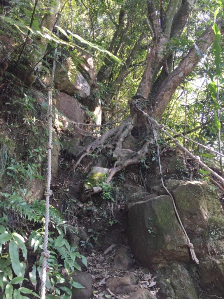 南港山2451攀岩步道20181219_487063