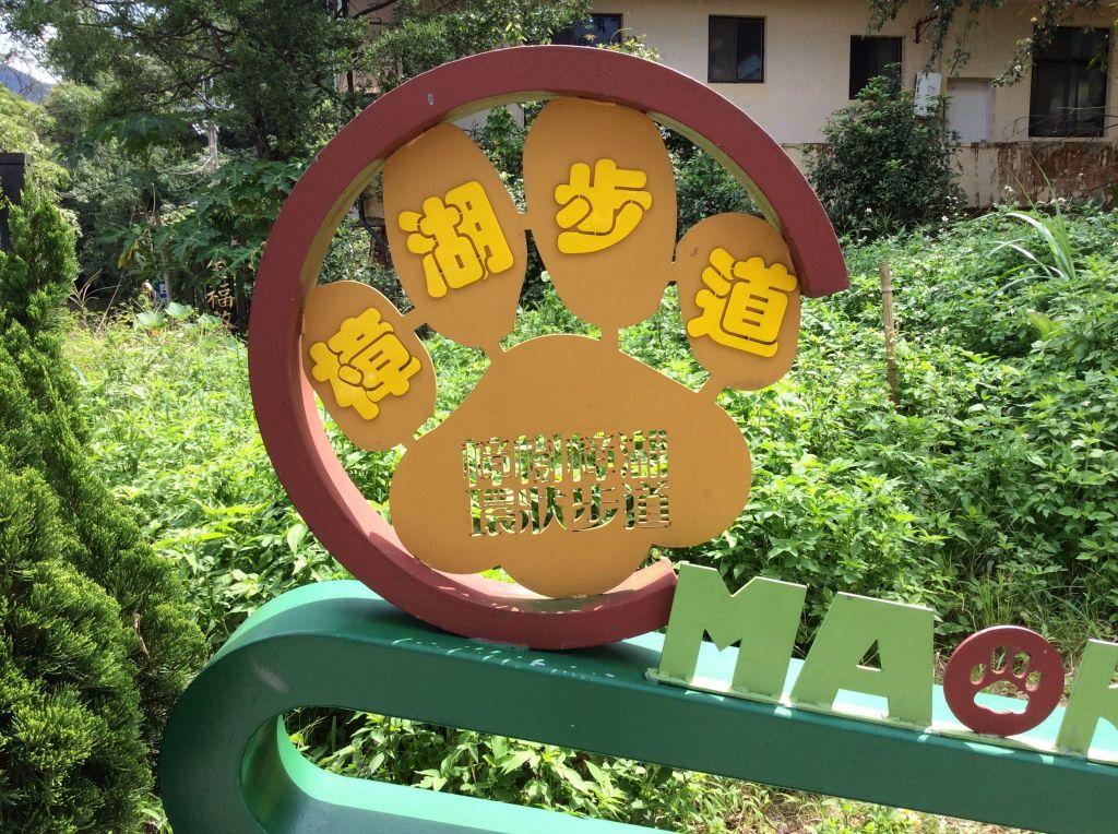 貓空樟樹樟湖環狀步道_198481