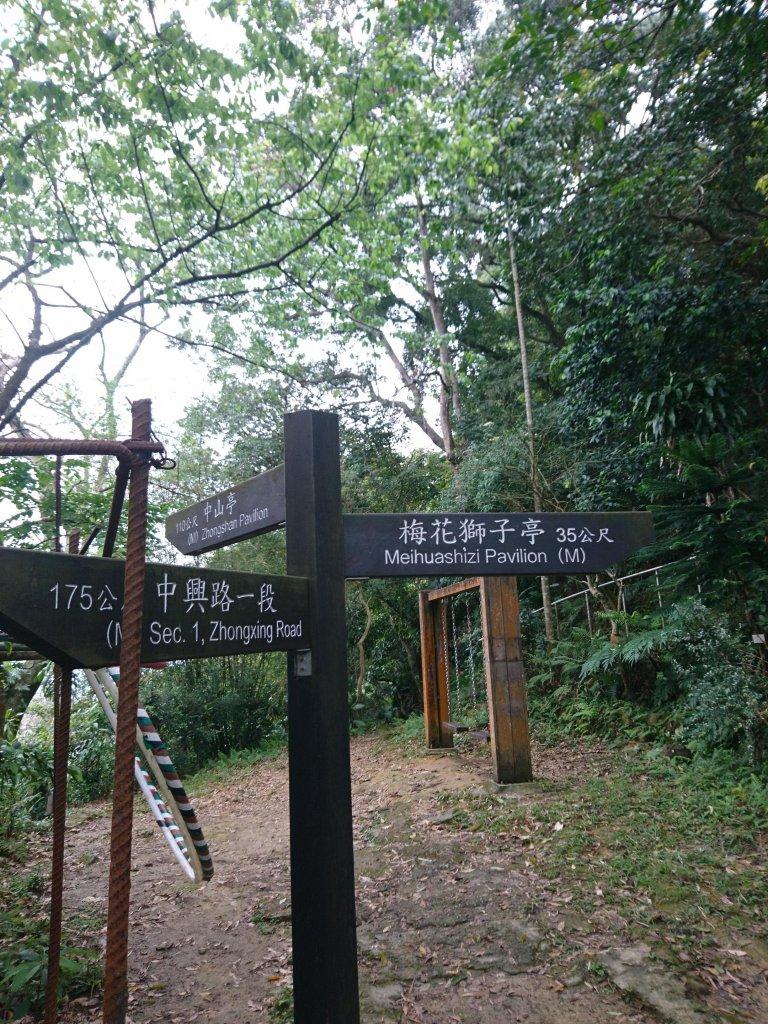 新店獅頭山(小獅山)_560950