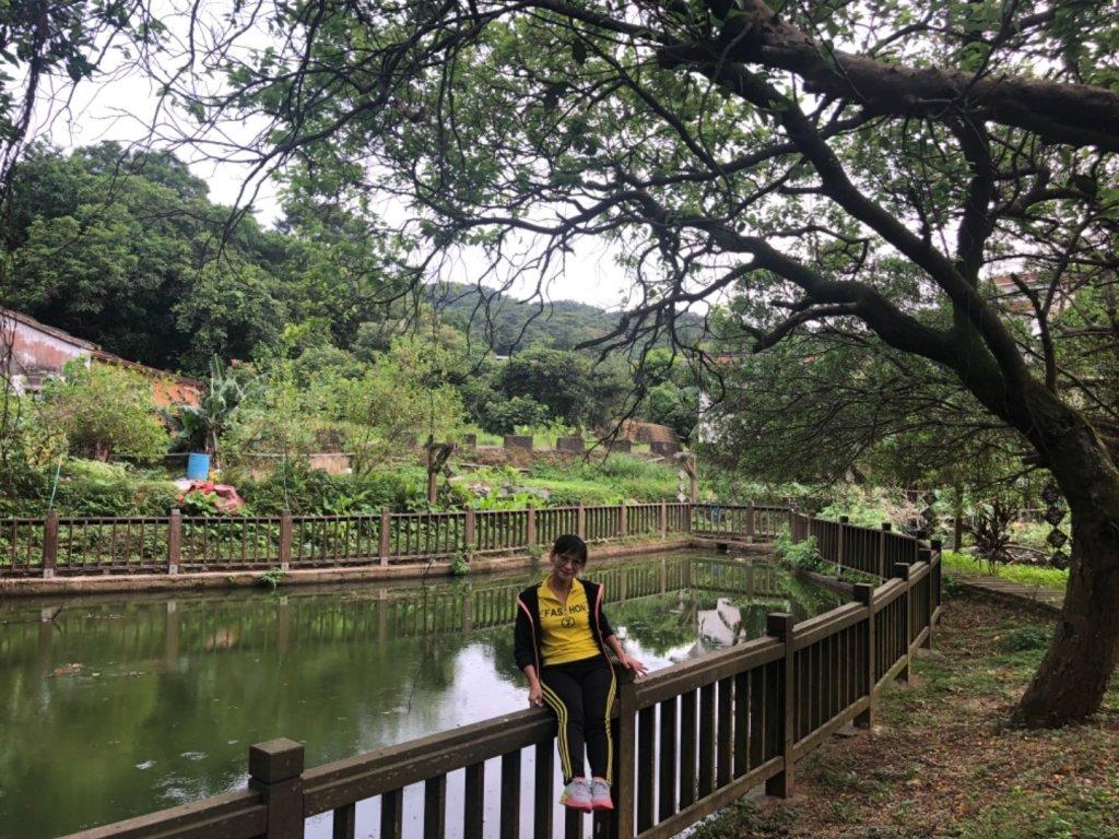 2019-07-09新北石門茶山步道_627010
