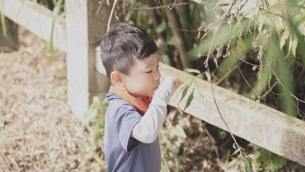 四歲小樂的第19座小百岳-集集大山_1111294