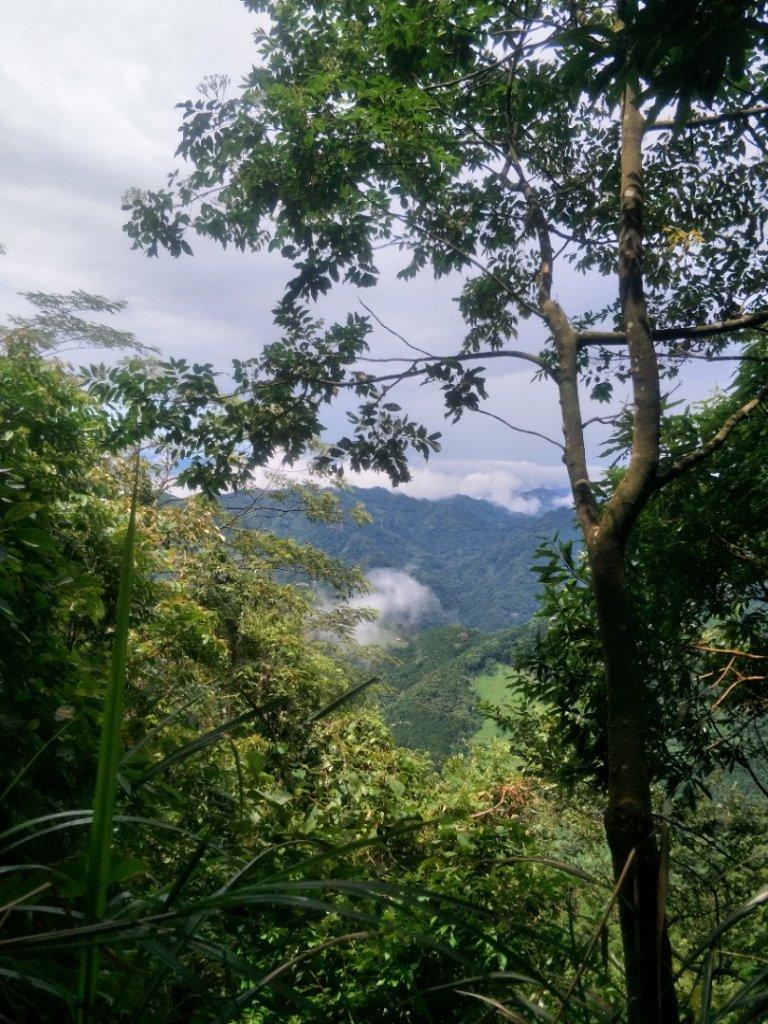 小百岳:向天湖山O型光天高山_1432518
