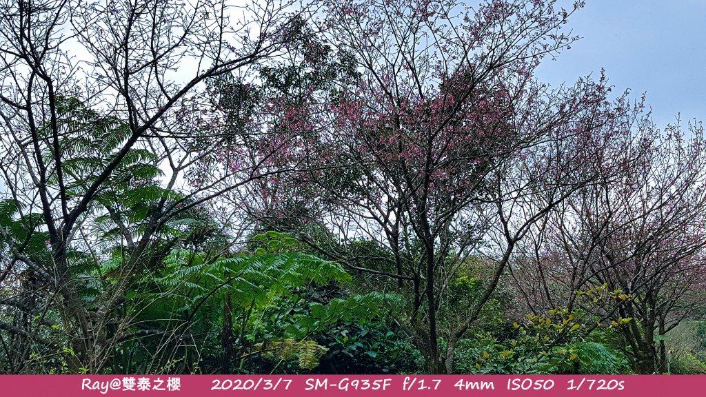 灣潭古道_911023